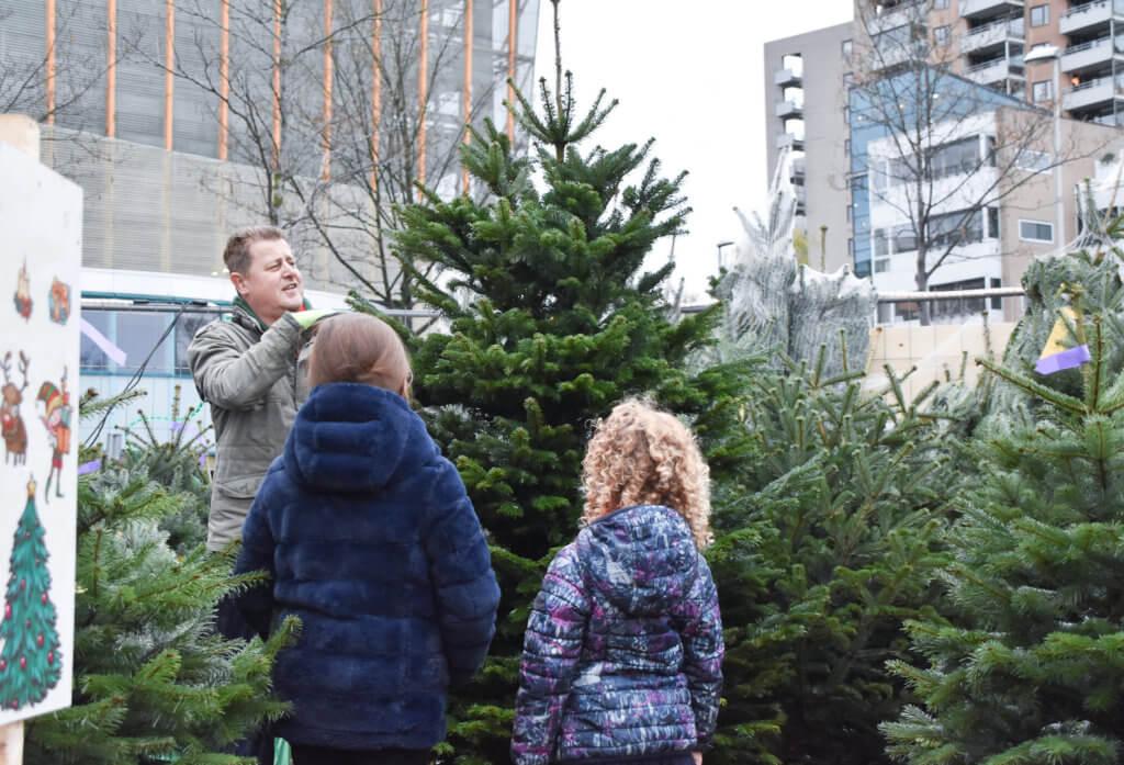 tips waardoor jij nog langer van je kerstboom kan genieten wees kritisch
